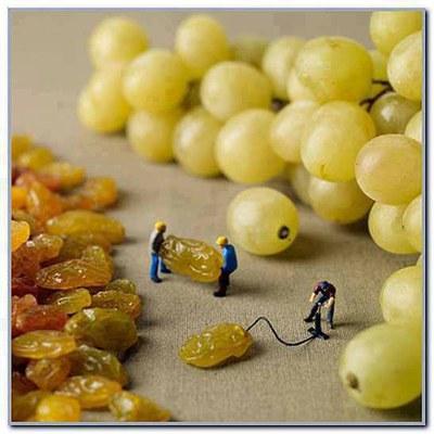 Raisin et raisins secs
